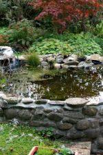 Пруд на дачном участке – как сделать искусственный водоем на участке, идеи ландшафтного дизайна и красивые примеры в саду около загородного дома
