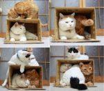 Как сделать дверцу для кошки – Как сделать дверцу для кошки своими руками. Домик для кошки своими руками: мастер-класс