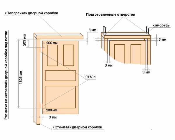 ширина двери высота ширина и толщина дверей по стандарту